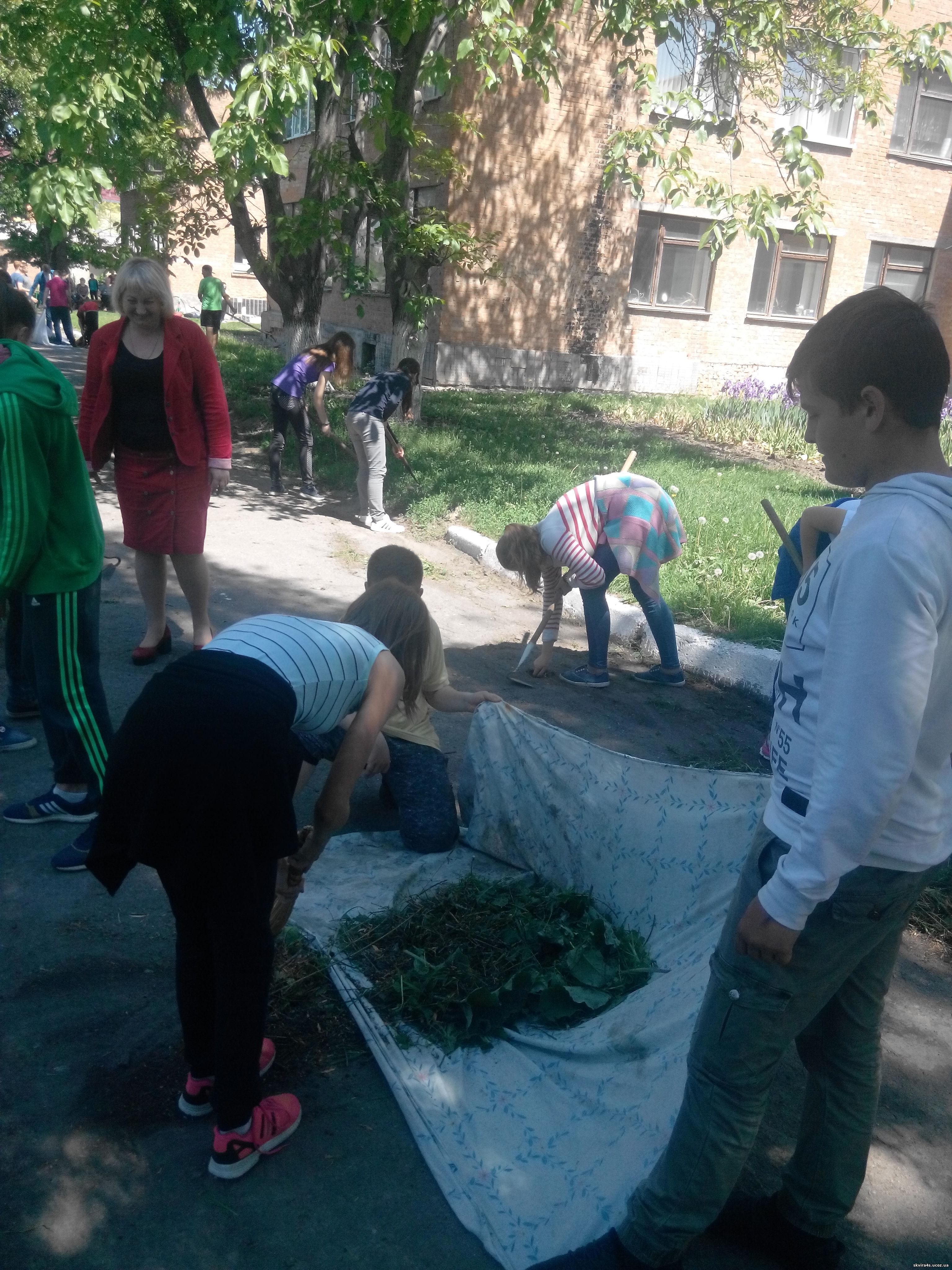 http://skvira4s.ucoz.ua/foto/23-05-17/2017523120744.jpg